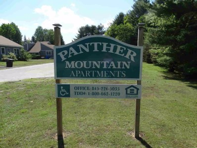 61 Panther Mountain Dr, Chester, NY 12817 - #: 181825