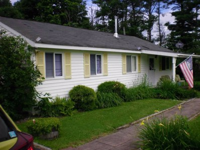 35 Church Rd, Rensselaerville, NY 12147 - #: 201826085