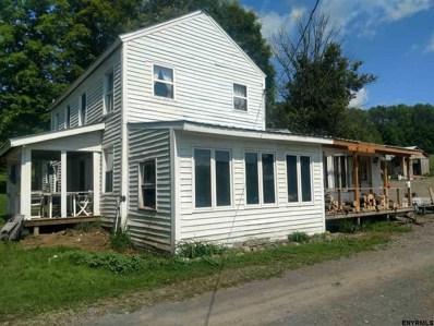 11025 Hoxie Rd, Brookfield, NY 13485 - #: 201826371