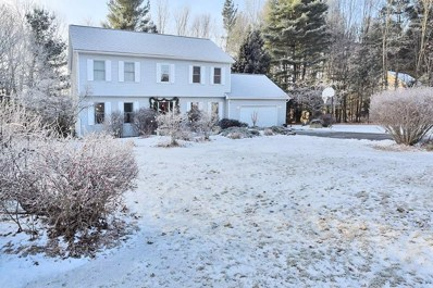 3 Brookside Dr, Saratoga Springs, NY 12866 - #: 201830972
