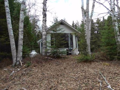 154 Griffin Rd, Indian Lake, NY 12842 - #: 201916738