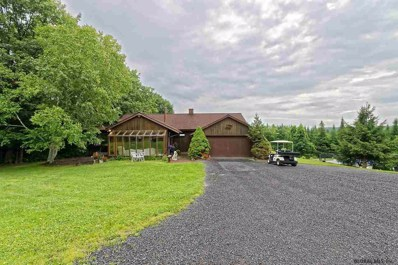 187 Middle Rd, Knox, NY 12009 - #: 201924804