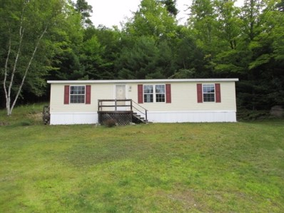 444 Olmstedville Rd, Chester, NY 12853 - #: 201930130