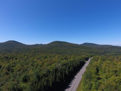 State Route 30, Duane, NY 12953 - #: 201930632