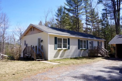 240 Olmstedville Rd, Chester, NY 12860 - #: 202027606