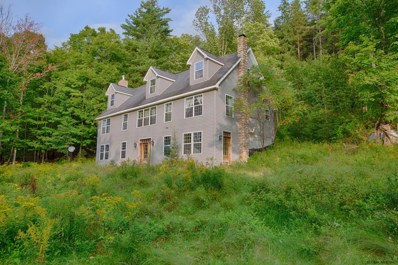 616 Sibley Gulf Rd, Cooperstown, NY 13326 - #: 202028417