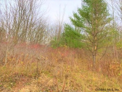 610 Wells Rd, Norwich, NY 13815 - #: 202032116