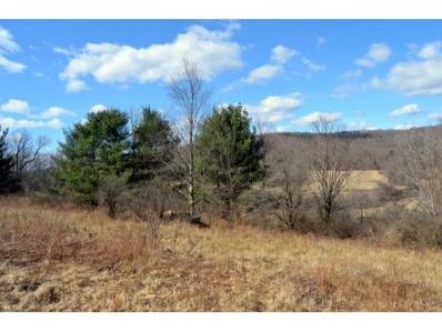 500 County Highway 4, Unadilla, NY 13849 - #: 204079