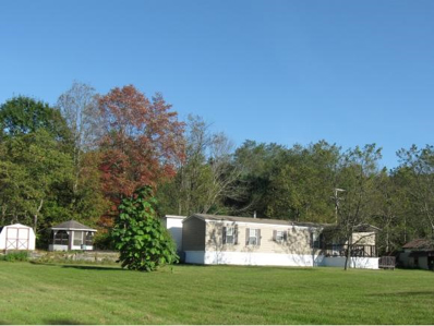 2053 River View Drive, Susquehanna, PA 18847 - #: 212155