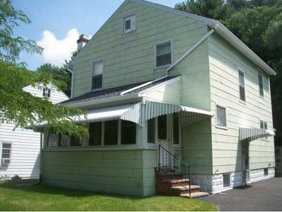 521 Airey, Endicott, NY 13760 - #: 216103