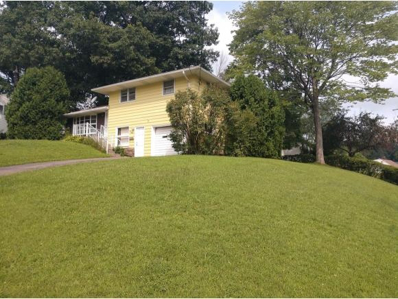 3005 Smith Drive, Endicott, NY 13760 - #: 216596