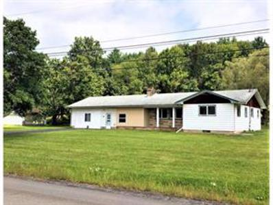 1107 Old Route 17, Windsor, NY 13865 - #: 222050