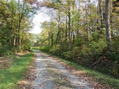 0 Briggs Hill Road, Van Etten, NY 14889 - #: 312609