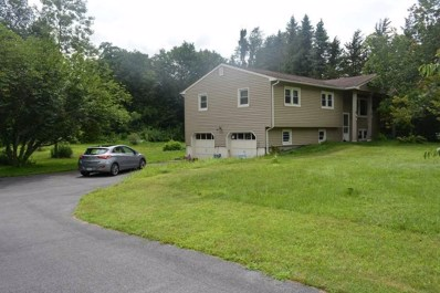 20 Mountain Dr, Pleasant Valley, NY 12569 - #: 364786