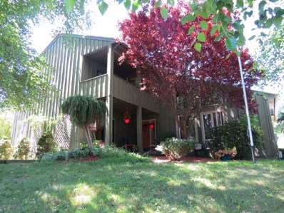 8 Fox Run, La Grange, NY 12590 - #: 373541