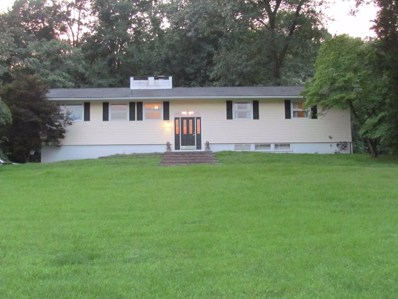 19 Deer Run Rd, Poughkeepsie Twp, NY 12603 - #: 374460