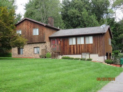 3 Schuele Drive, Wappinger, NY 12590 - #: 374519
