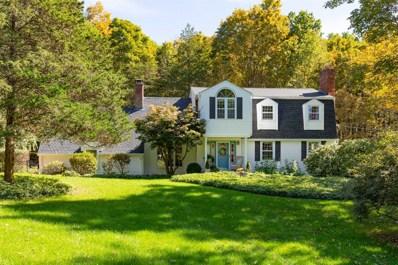 43 Woodland Dr, Pleasant Valley, NY 12578 - #: 376017