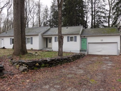 36 S Quaker Hill Rd, Pawling, NY 12564 - #: 380283