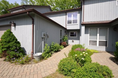 20 East Knl, V. Rhinebeck, NY 12572 - #: 381903