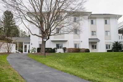 6 Carroll Blvd, V. Millbrook, NY 12545 - #: 396907