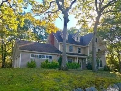 20 North Rd, Stony Brook, NY 11790 - #: 3046523