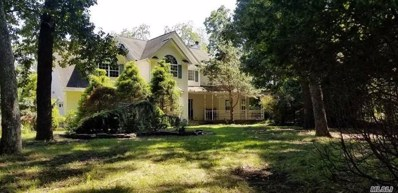 75 E Inlet View Path, East Moriches, NY 11940 - #: 3057212