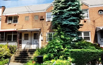 1043 116 St, College Point, NY 11356 - #: 3154638