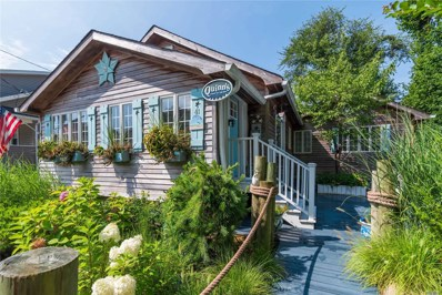 41 Clearview Pl, Blue Point, NY 11715 - #: 3154926