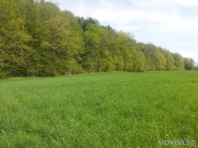 9 Route 166, Middlefield, NY 13326 - #: 1800265