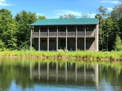 296 Twin Ponds Drive, Newport, NY 13416 - #: 1802852