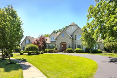 207 Village Pointe Lane, Williamsville, NY 14221 - #: B1112748