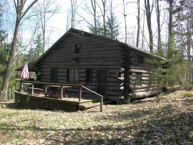 8406 Trail 6 Trail, Rushford, NY 14777 - #: B1119702