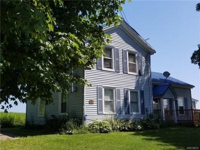 7938 Centerville Road, Hume, NY 14735 - #: B1135500