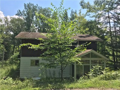 10420 New Oregon Road, Eden, NY 14057 - #: B1136737