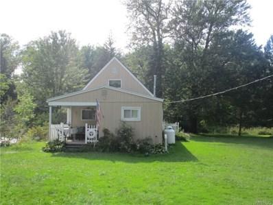117 Goose Creek Road, Ashville, NY 14710 - #: B1149203