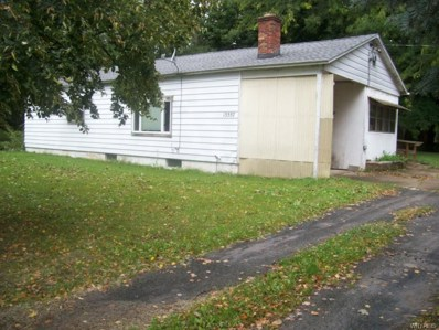 13557 Route 31 Road, Albion, NY 14411 - #: B1153057