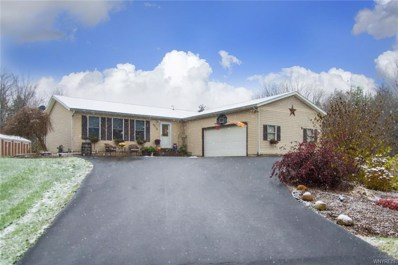 9212 Burlingham Road, Holland, NY 14080 - #: B1159632