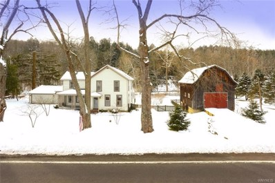 8908 State Road, Colden, NY 14033 - #: B1164725