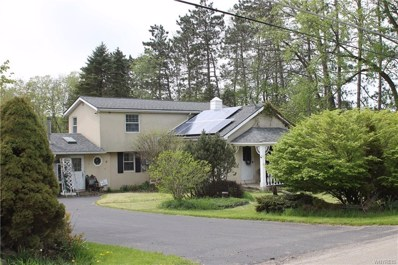 9868 New Oregon Road, Eden, NY 14057 - #: B1194369