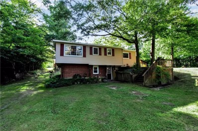 7034 Lewis Road, Colden, NY 14080 - #: B1215410