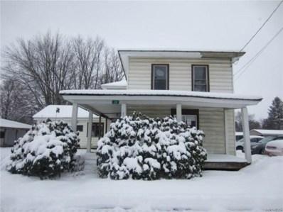219 Pine Street, Dayton, NY 14138 - #: B1242826