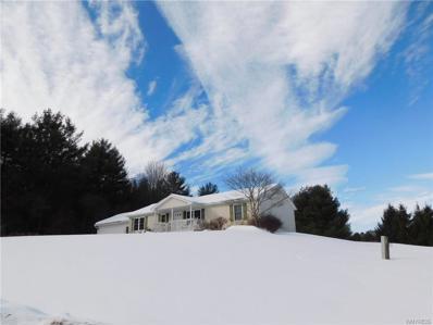 9837 Meadow Lane, Caneadea, NY 14744 - #: B1320640