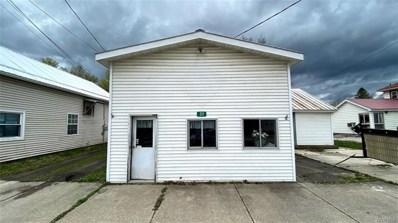 217 Pine Street, Dayton, NY 14138 - #: B1333619
