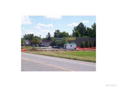 11300 Maple Ridge Road, Shelby, NY 14103 - #: B486173
