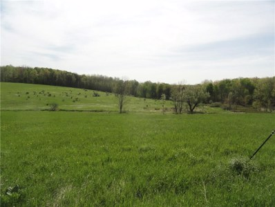 Tucker Road, Thurston, NY 14821 - #: R1042052