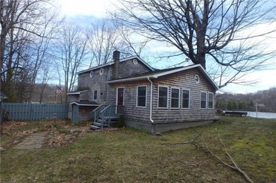 12 E High Banks Drive, Fulton, NY 13069 - #: R1113880