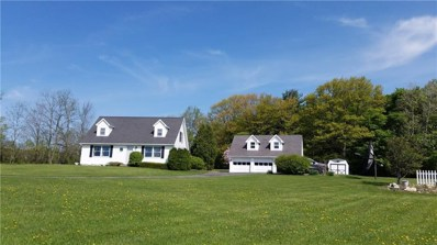 4599 State Route 226, Rock Stream, NY 14878 - #: R1119765