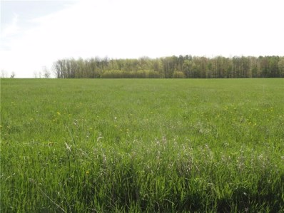 Lot 1 Tucker Road E, Thurston, NY 14821 - #: R1136508