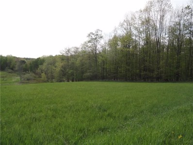 Tucker Road E, Thurston, NY 14821 - #: R1136550